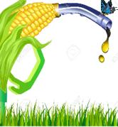 Fuel Ethanol Image